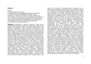 Filozofia XIX.doc