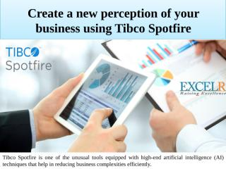 Create a new perception of your business using Tibco Spotfire.pptx
