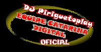 Hungria Hip Hop - Quer Parar ( NOVO STYLO ) {Lançamento 2013} Wanderson DJ Piriguetoplay.mp3